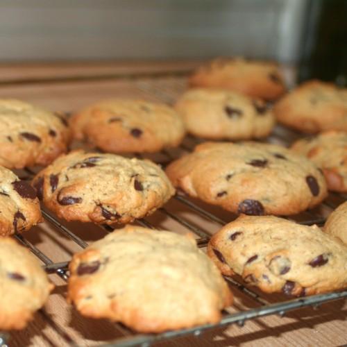 cookies dodus.jpg