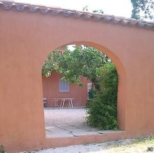 patio_exterieur_nord_plage